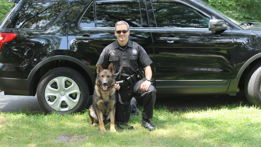 Officer Ken Wood and Canine Major in front of a black car