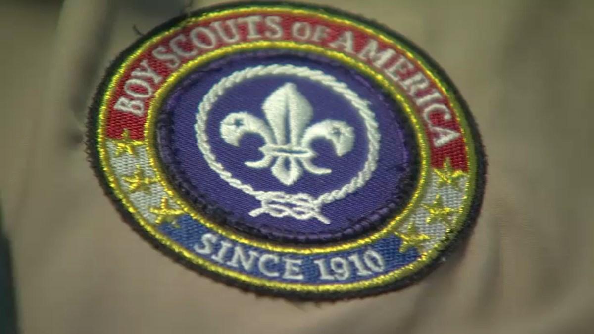 Sex Scout 24