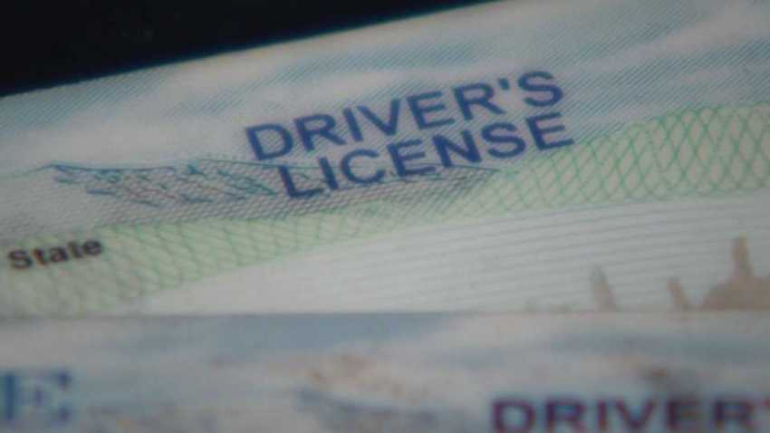 Maine Driver's License Generic