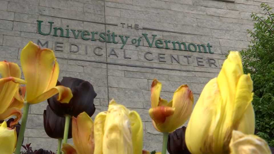 Largest Vt. Hospital Among Victims of Cyberattack