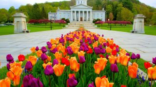 Vermont Technical College