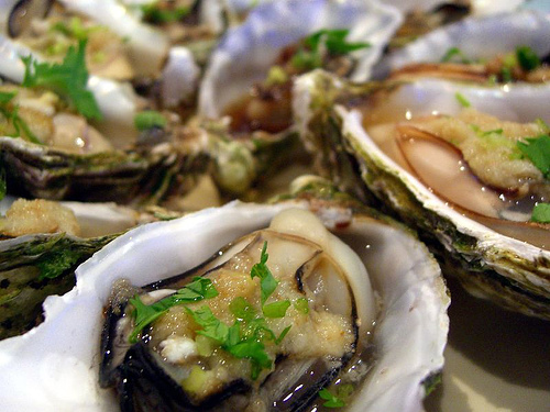 oysters boston images list