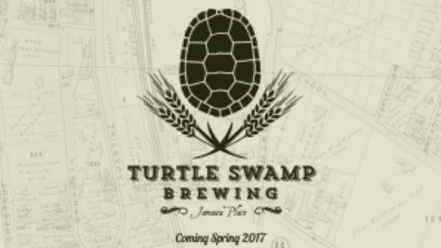 turtle17