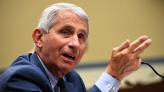 Anthony Fauci, director of the National Institute for Allergy and Infectious Diseases, testifies during a House Subcommittee on the Coronavirus Crisis hearing on a national plan to contain the COVID-19 pandemic, on Capitol Hill in Washington, D.C. on July 31, 2020.