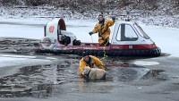 Firefighters Fetch Dog From Frozen Pond With a Hovercraft