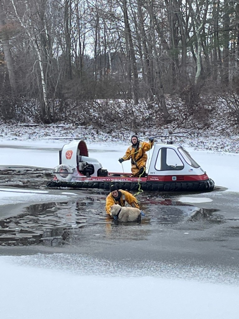 Firefighters with a hovercraft rescue a dog named Rocky from the frozen waters of a pond in Shrewsbury, Massachusetts.