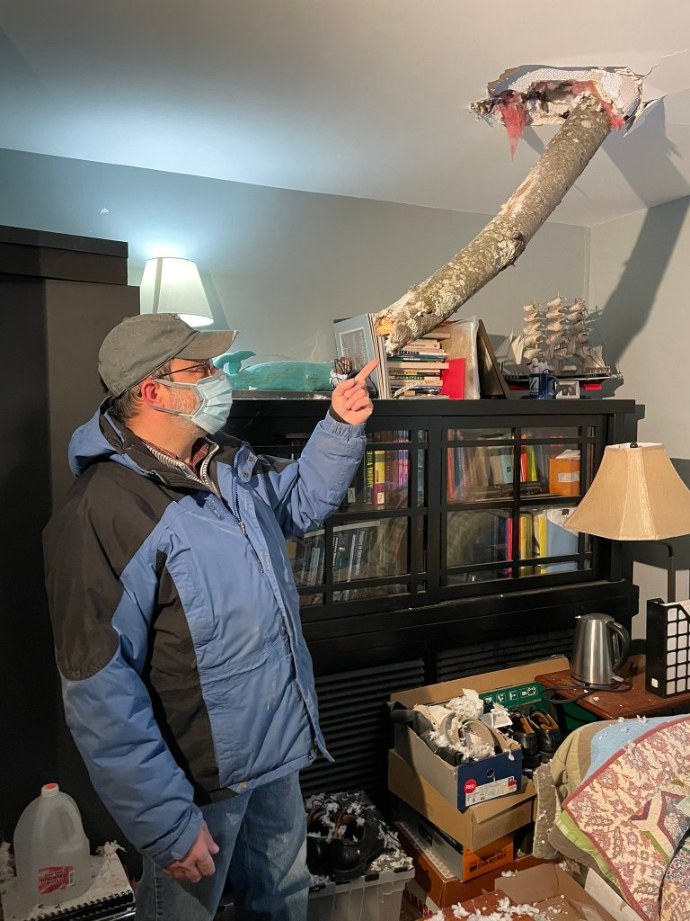 A tree fell onto a home in Topsfield, Massachusetts, amid a wind storm