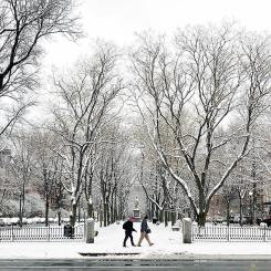 Snowy Boston: Top Instagram Photos of the Week