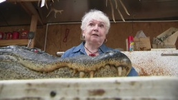 Texas Great-Grandmother Guns Down Gator