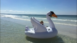 Boy, Mom Drift to Sea in Giant Inflatable Swan