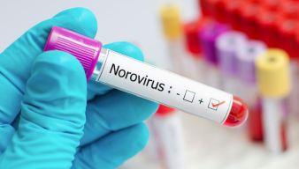 Norovirus Sickens Nearly 100 People in Bridgton, Maine Pond