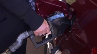 AAA: No Change in Gas Prices This Week