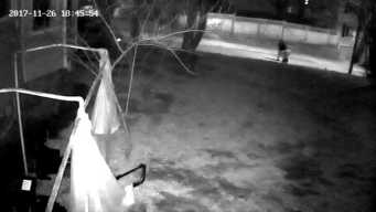 New Surveillance Video Released in Fatal Shooting Probe
