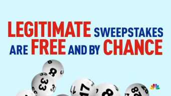 Did You Win? The Lowdown on Sweepstakes