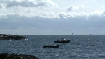 Authorities Recover Body of Missing Diver