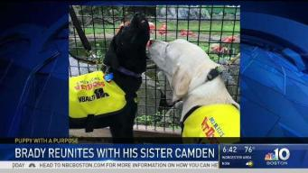 Brady Visits His Sister Camden in Baltimore