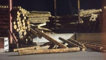 Swedish Company Unveils All-Electric Autonomous Semi Logging Truck