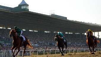 30th Horse Dies at Santa Anita Track, HOF Trainer Banned