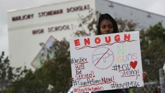 Parkland Alumni, Survivors Advocate for Safer Gun Laws