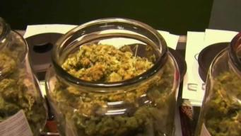Green Light Given for Recreational Pot Sales at 2 New Stores