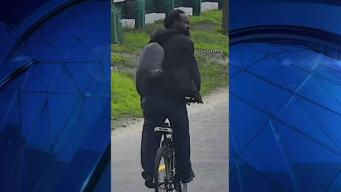 Mass. State Police Looking for Esplanade Assault Suspect