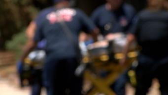 Toddler Dies After Shooting Self In Head