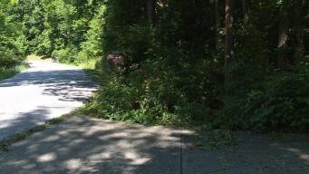Crash Victim Spends 12 Hours In Ditch