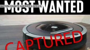Burglary Suspect Was Actually a Roomba