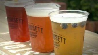 Suds Under The Sun: Must-See Boston Beer Gardens