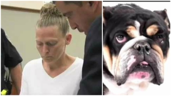Trainer Reveals New Details About Death of Ex-Patriot's Dog