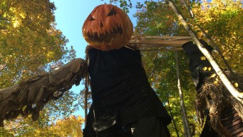 20 Can't-Miss Halloween Events in Greater Boston