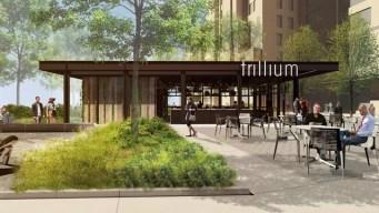 Trillium Brewing Company to Open New Fenway Location