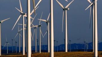 President's Windmill Hatred Is a Worry for Booming Industry