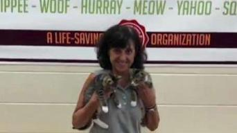 Maine Woman Happy to Have Adopted a Pair of Cats