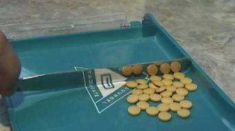 Safeguarding Your Prescription Information