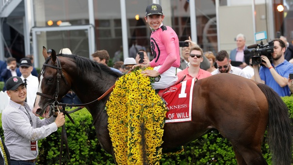 2019 Preakness Stakes in Pictures