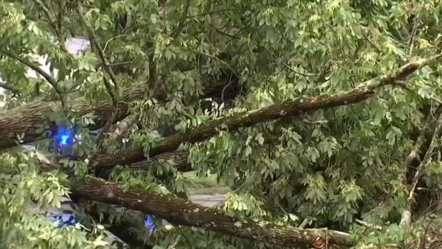 [NECN] Cleanup Begins Across New England After Powerful Storm