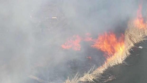 [NECN] Crews Respond to Large Brush Fire in Boston's Fenway Neighborhood