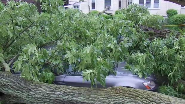 [NECN] Damage Comes After Storms Move Through Greater Boston