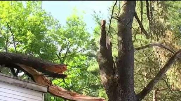 [NECN] Cleanup Underway Across New England After Powerful Storm
