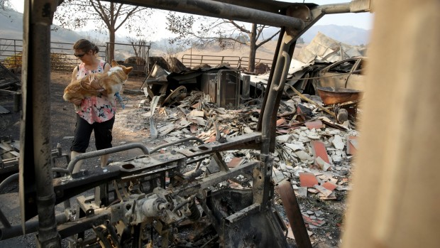 [NATL-BAY]Images From the Destructive Kincade Fire in Sonoma County