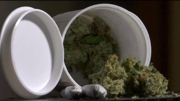 [NECN] Mass. Looks to Open Cannabis Cafes