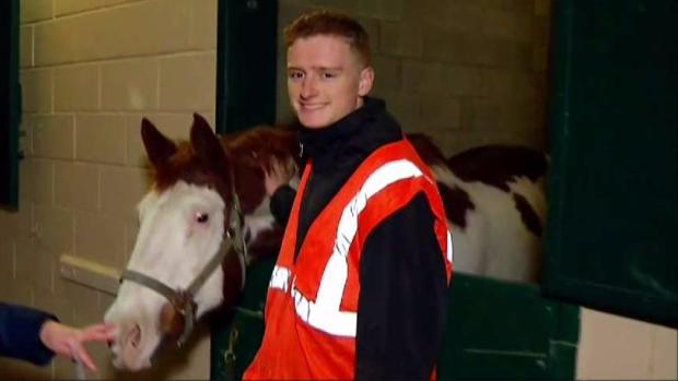 [NATL-DGO] Volunteers Take Care of Horses at Del Mar Shelter