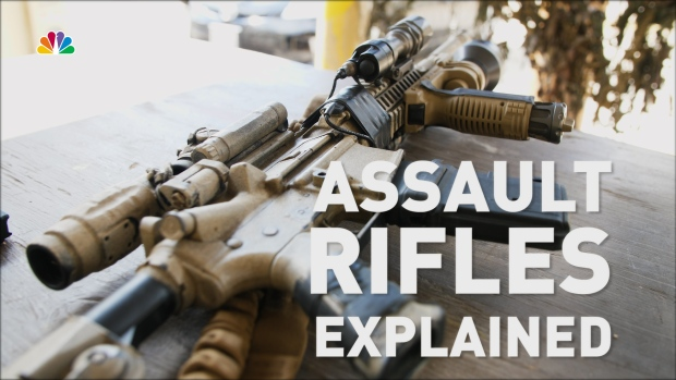[NATL] Assault Rifles Explained: What They Are and How They're Used