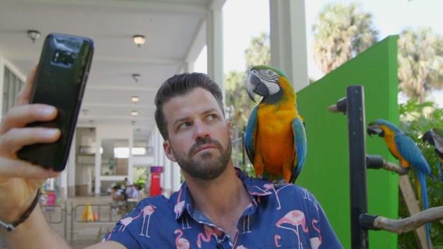 Full Episode: Destination Florida