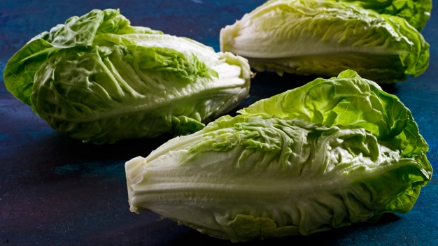 US Officials: Don't Eat Romaine Grown in Salinas, Calif.