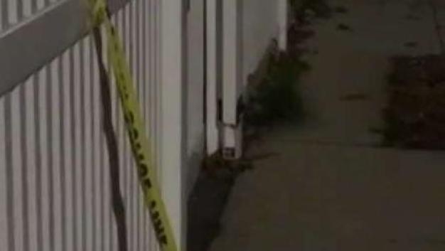 One Man Dead in Mattapan Shooting