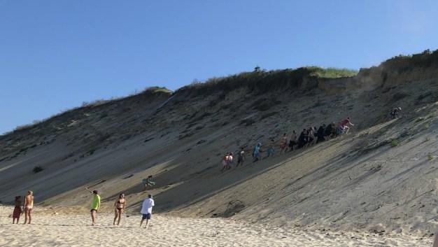 Beach Where Man Was Bitten Still Closed Over Shark Activity