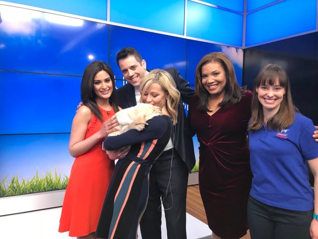 NBC10 Boston's Today Show Puppy Has a Name