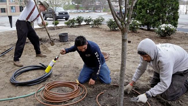 US to Add 30,000 Seasonal Worker Visas as Soon as This Week